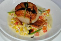 Pan Seared Scallops over Sweet Corn and Fingerling Ragout